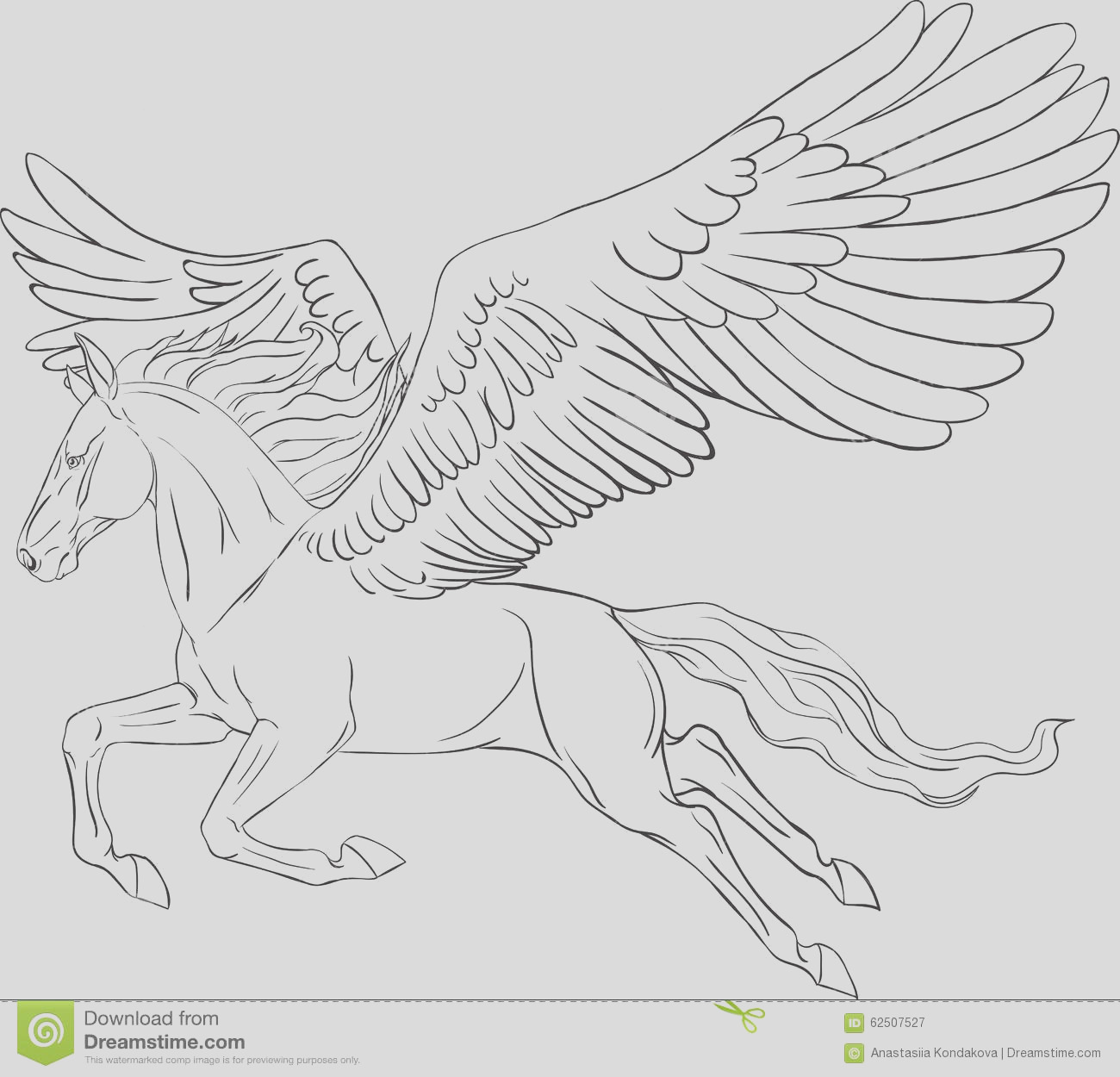 stock illustration coloring page pegasus realistic image