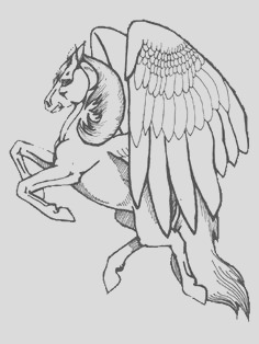 pegasus to color