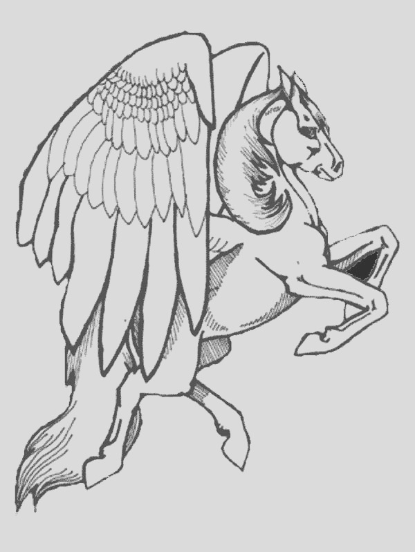 realistic drawing of pegasus coloring page