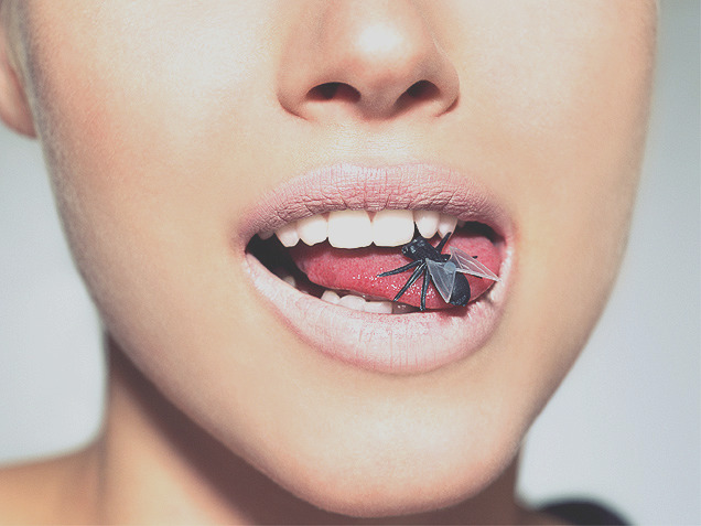 youre eating bugs red food coloring I