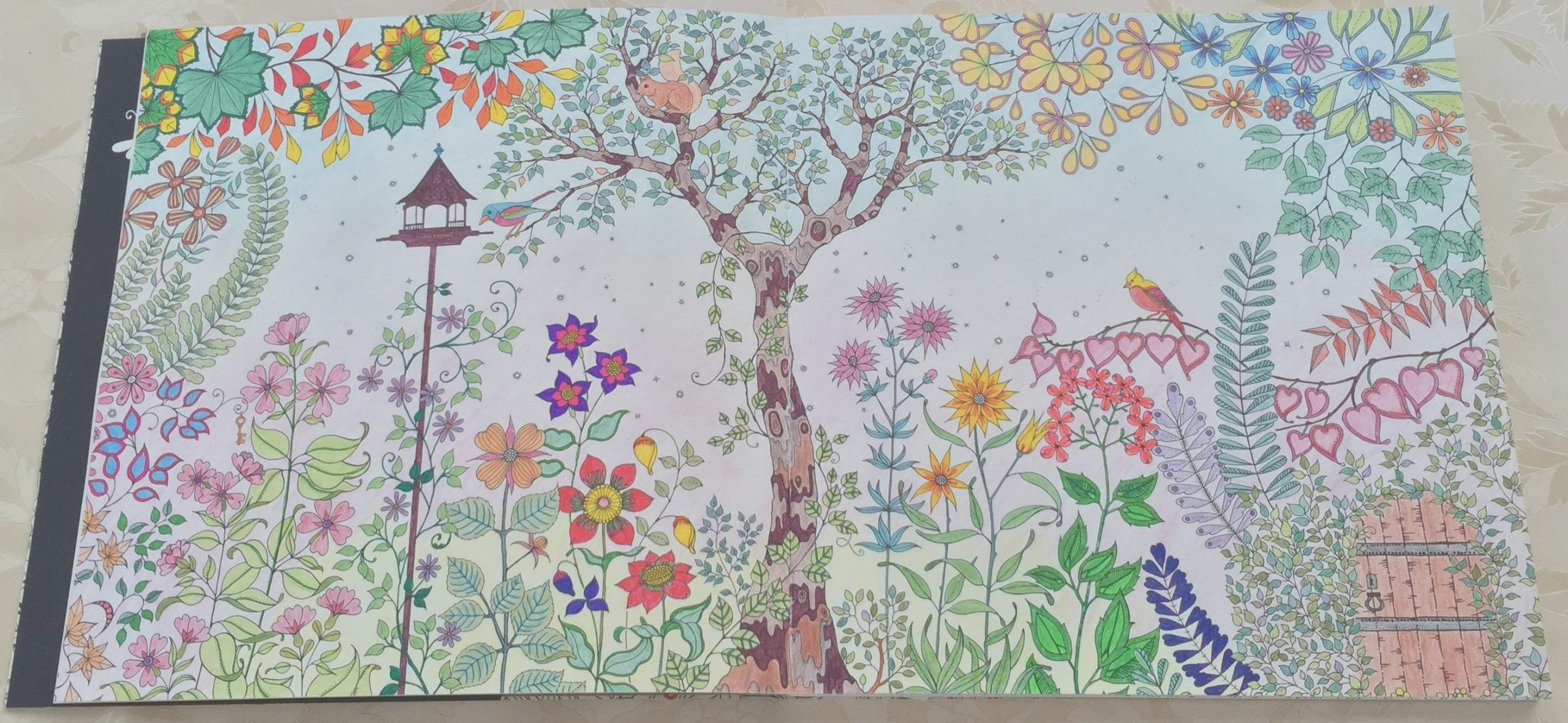 finally done with my first page of secret garden