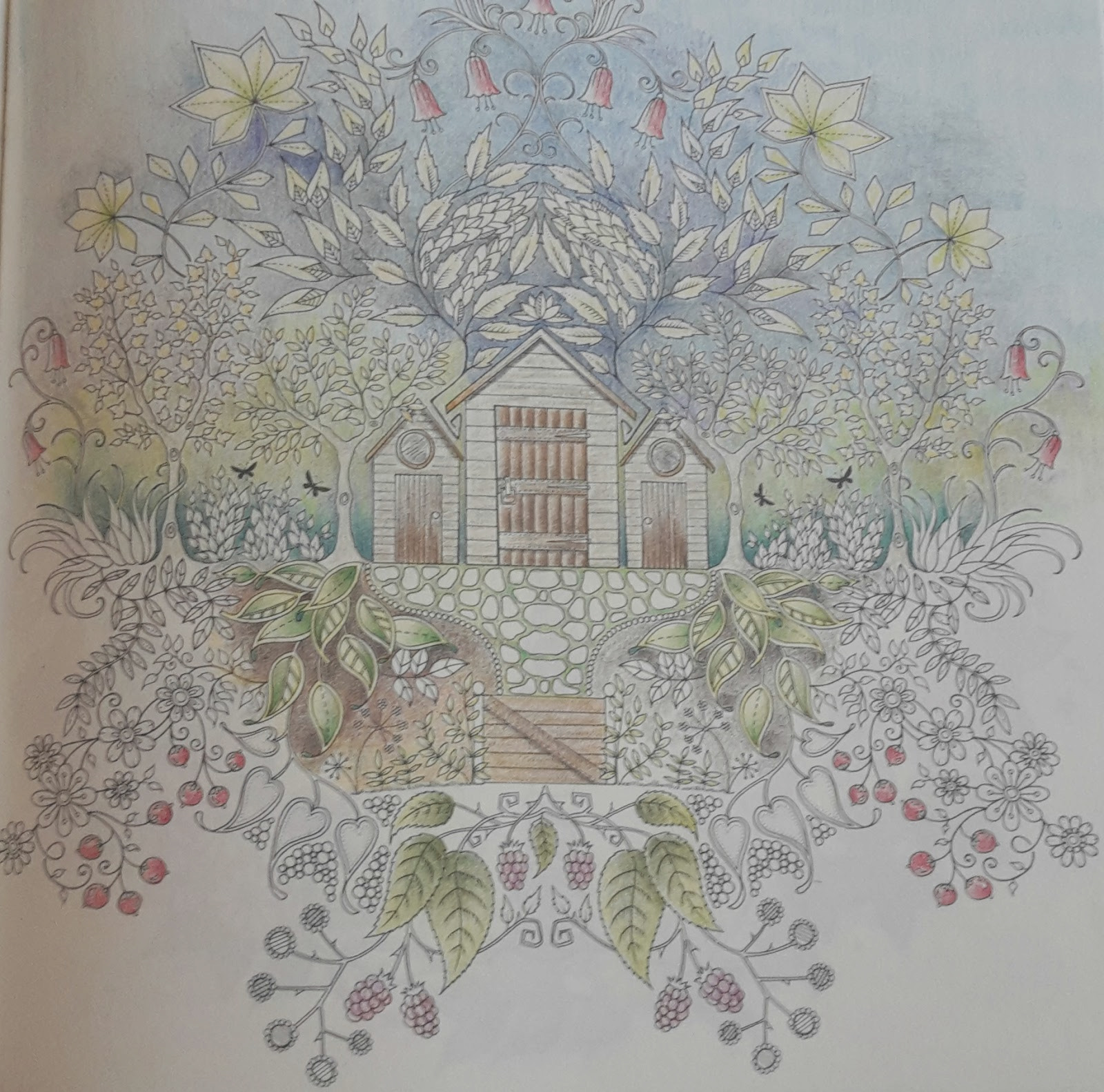 colouring secret garden approaching 13