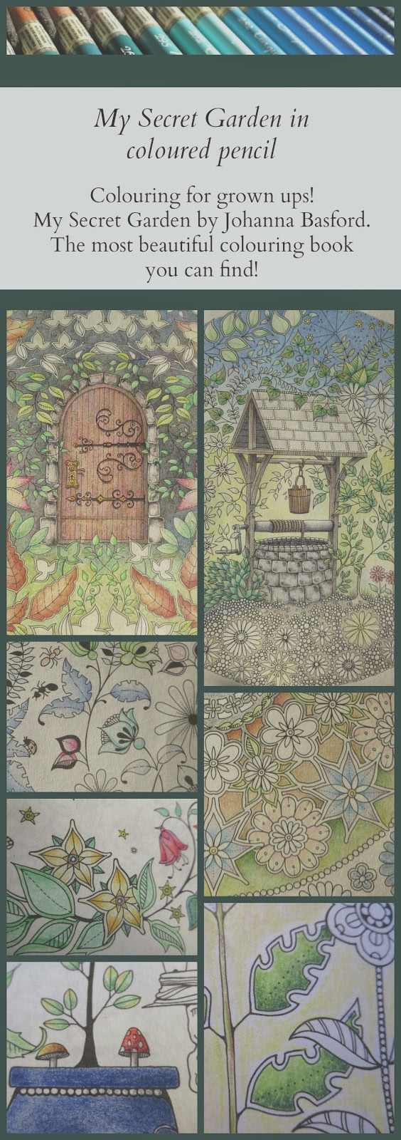 my secret garden colouring book part 3