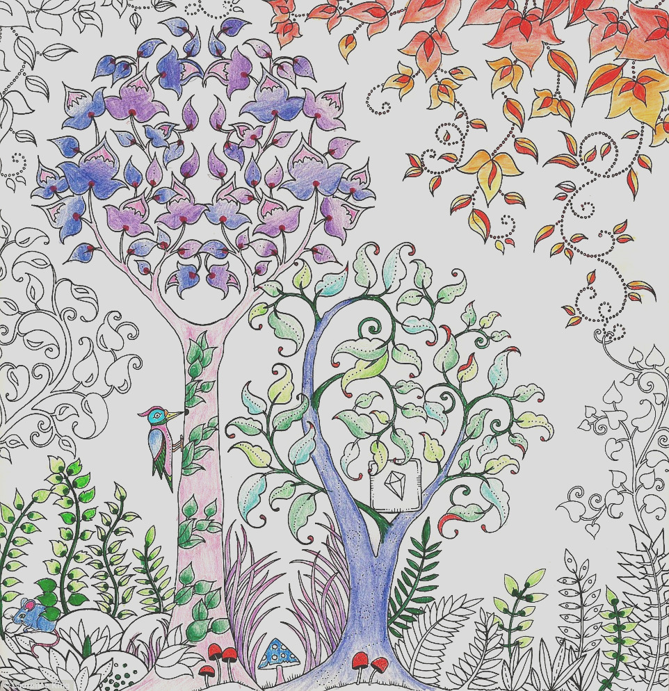 British author sells million copies colouring book adults