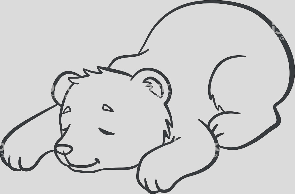 coloring pages wild animals little cute baby bear sleeps gm