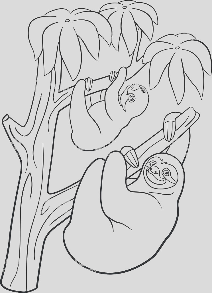 coloring pages mother sloth with her little cute baby gm