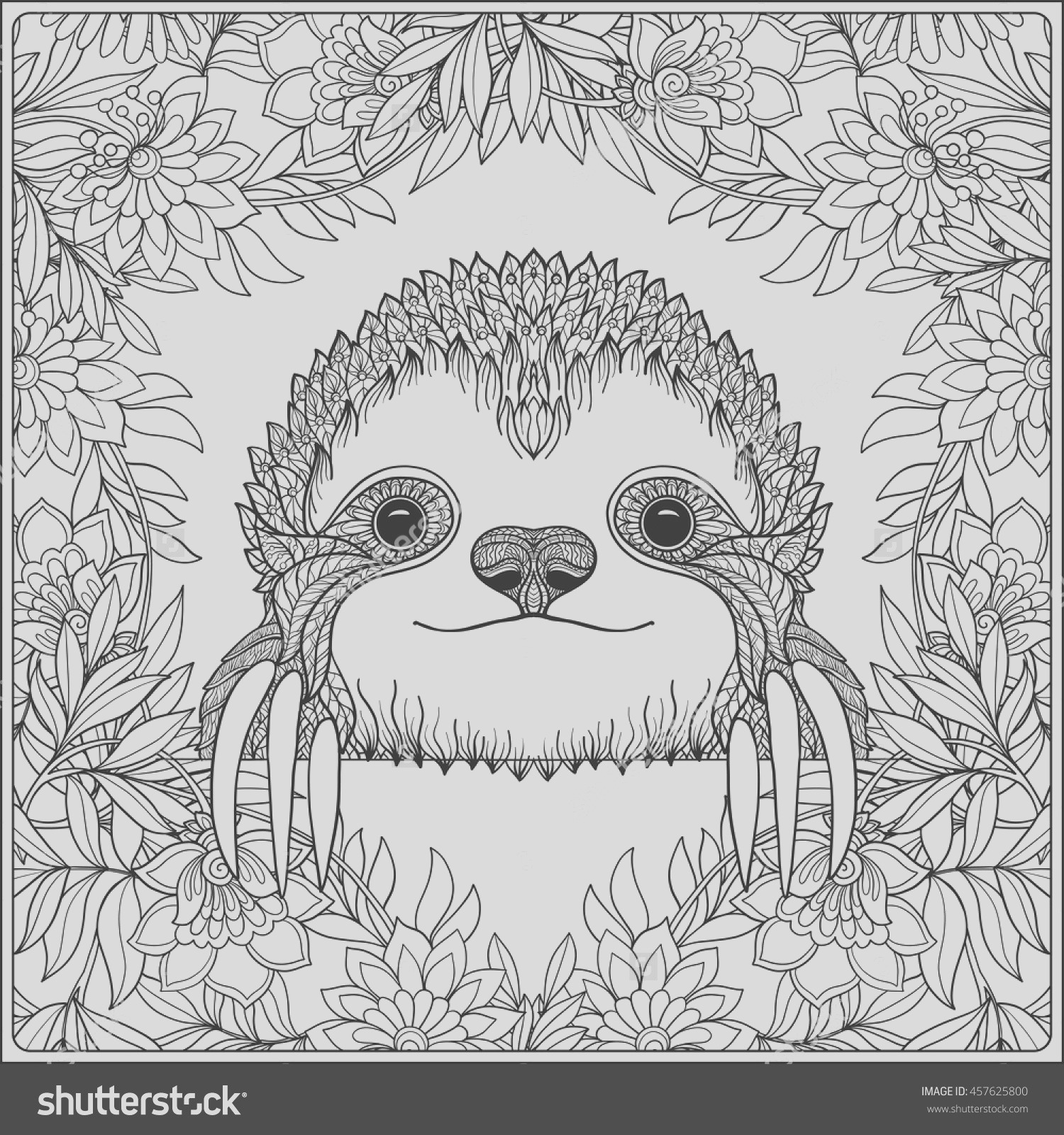 three toed sloth coloring pages
