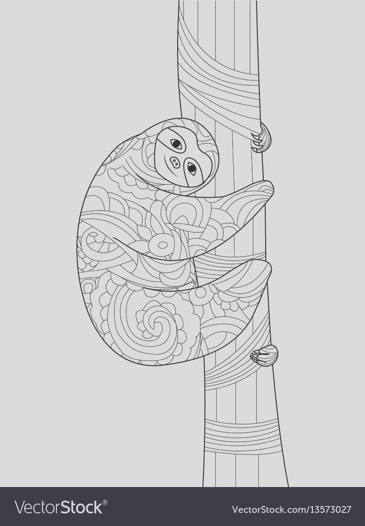 sloth on a branch coloring book for adults vector