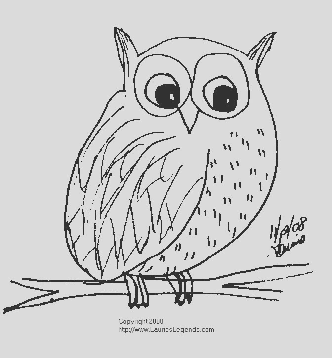 snowy owl coloring