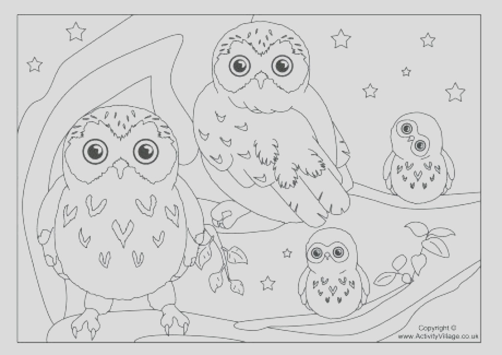 snowy owl coloring page