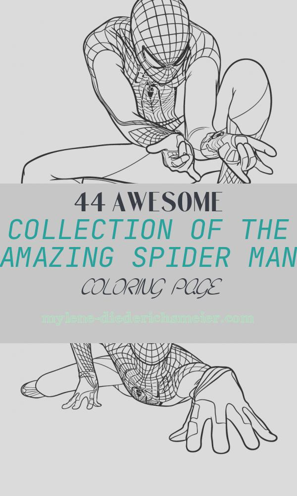 The Amazing Spider Man Coloring Page New the Amazing Spiderman Ready to Shoot His Webs Coloring