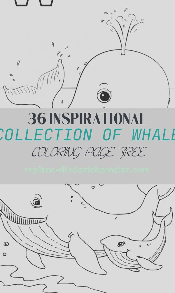 Whale Coloring Page Free Beautiful W is for Whale Coloring Page