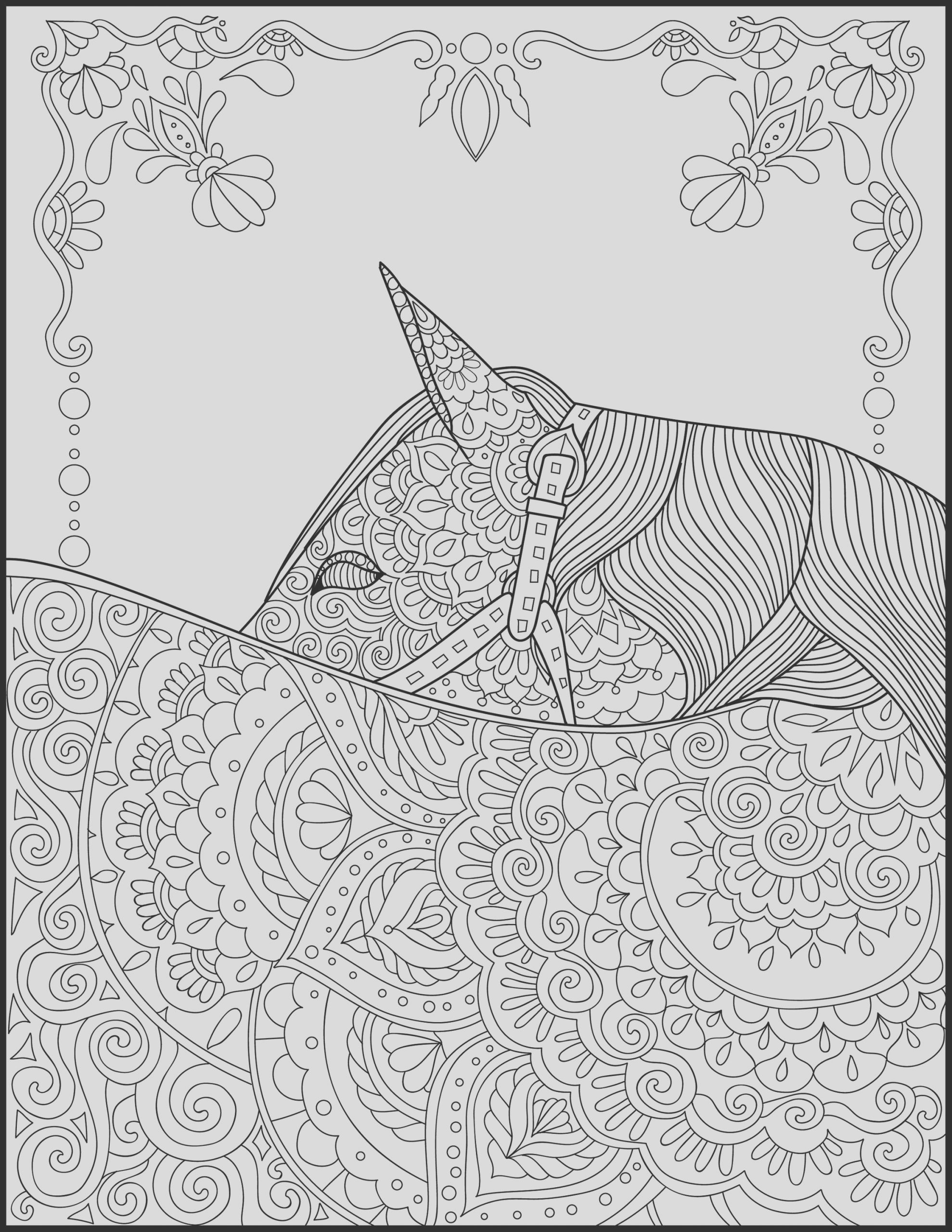 horse lover adult coloring pages
