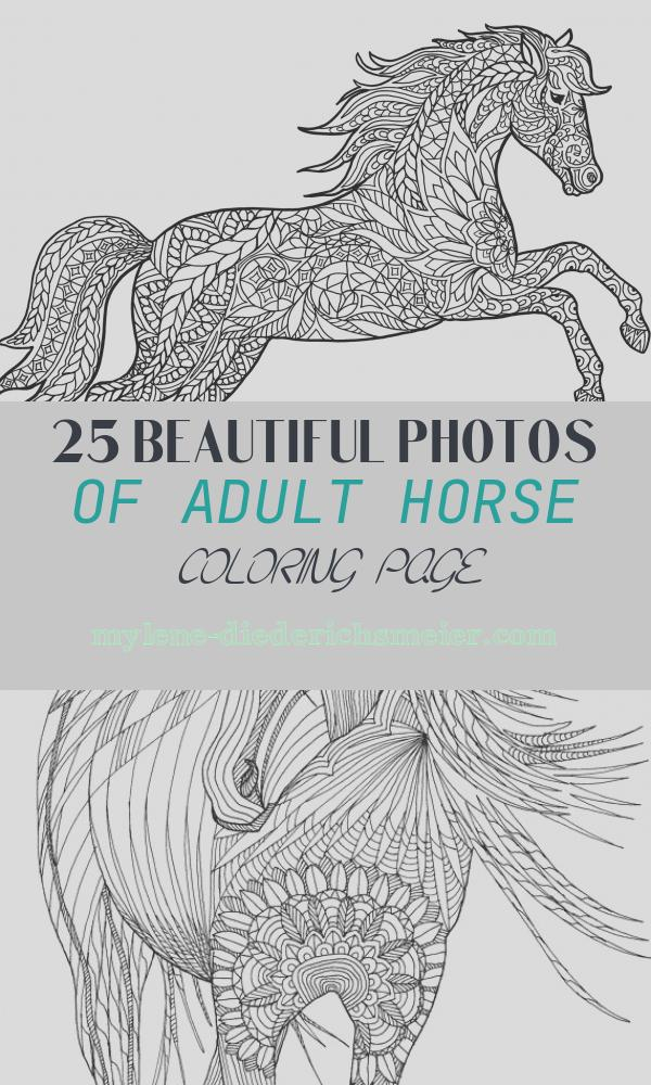 Adult Horse Coloring Page Inspirational Animal Coloring Pages for Adults Best Coloring Pages for