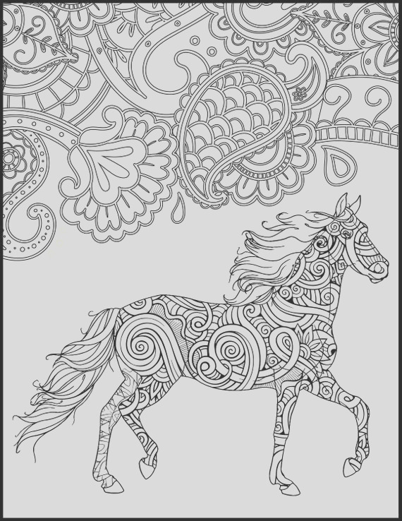 horse coloring page for adults horse
