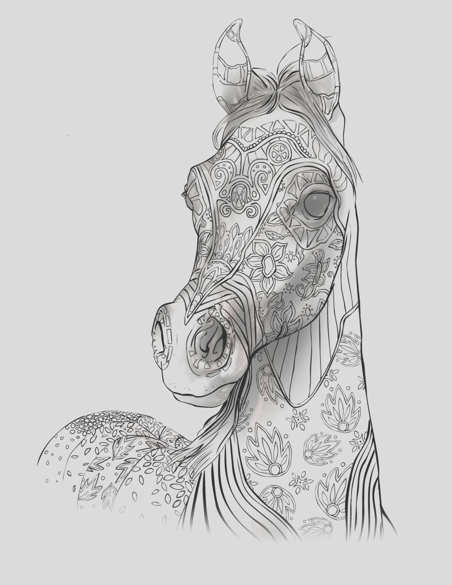 adult coloring book page beautiful stallion for adult coloring to