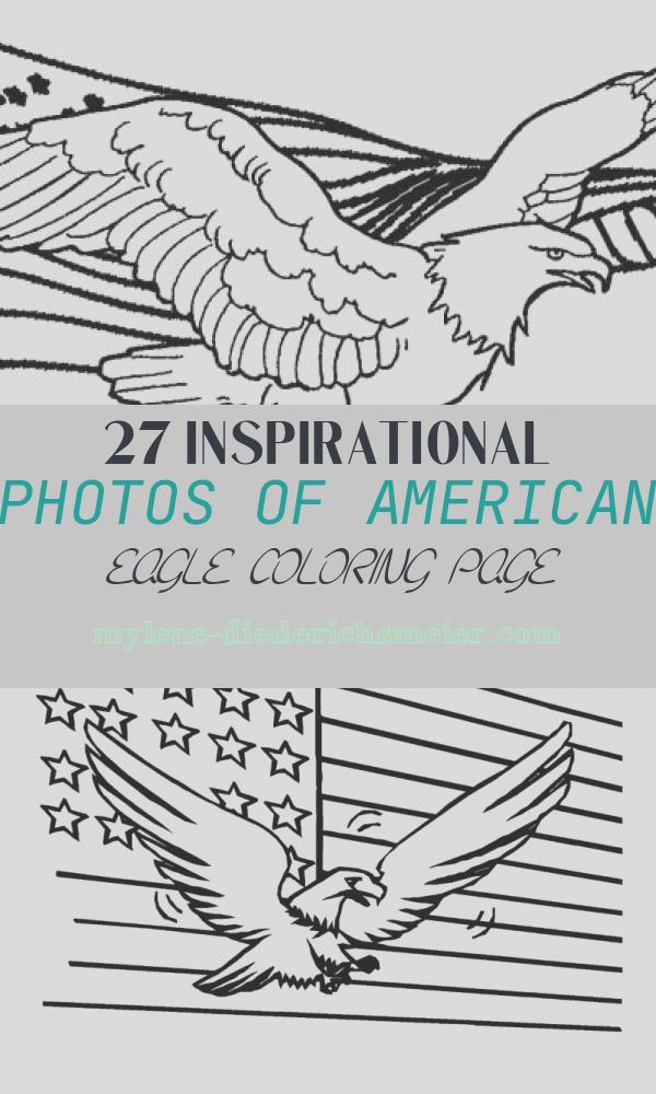 American Eagle Coloring Page Awesome Printable Eagle Coloring Pages for Kids