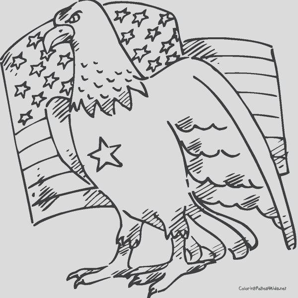eagle coloring pages bird coloring pages animals coloring pages 4 printable coloring pages
