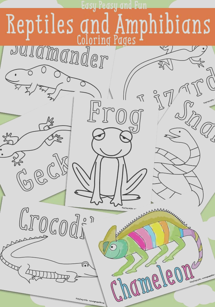 free reptile and amphibian coloring pages