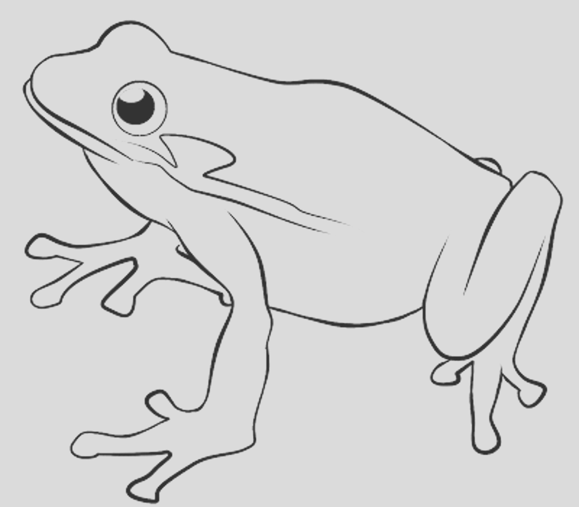 frog coloring pages for kids