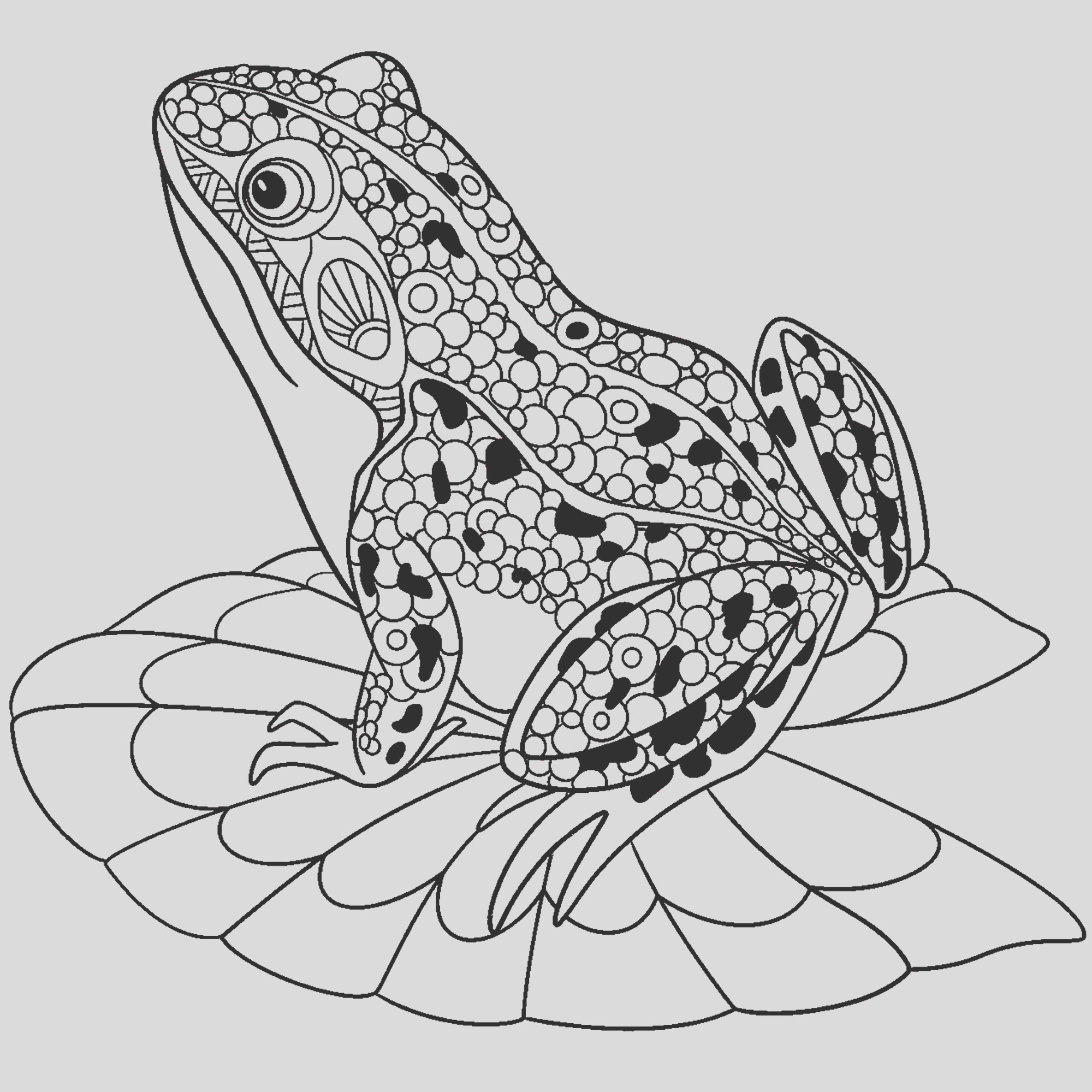 frogs image=frogs Coloring pages for children JustColor kids frogs 1