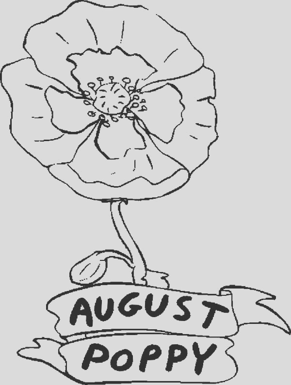 poppy flower in august coloring page