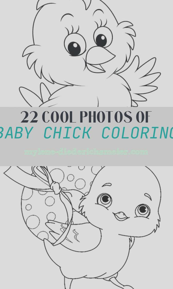 Baby Chick Coloring Awesome 20 Free Easter Chick Coloring Pages Printable