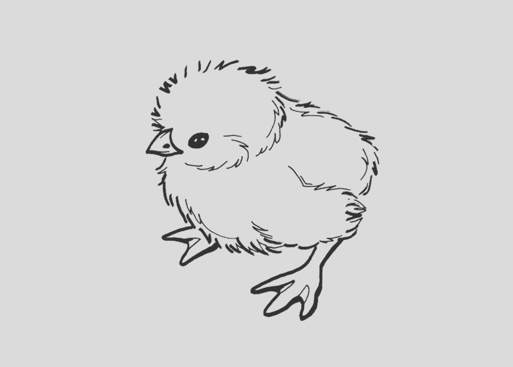 baby chick coloring pages online