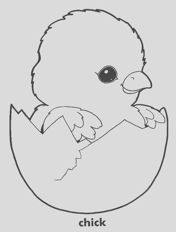 baby chick in his eggshell coloring page