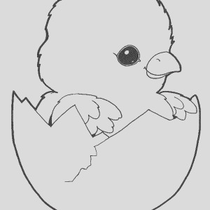 baby chick outline coloring page