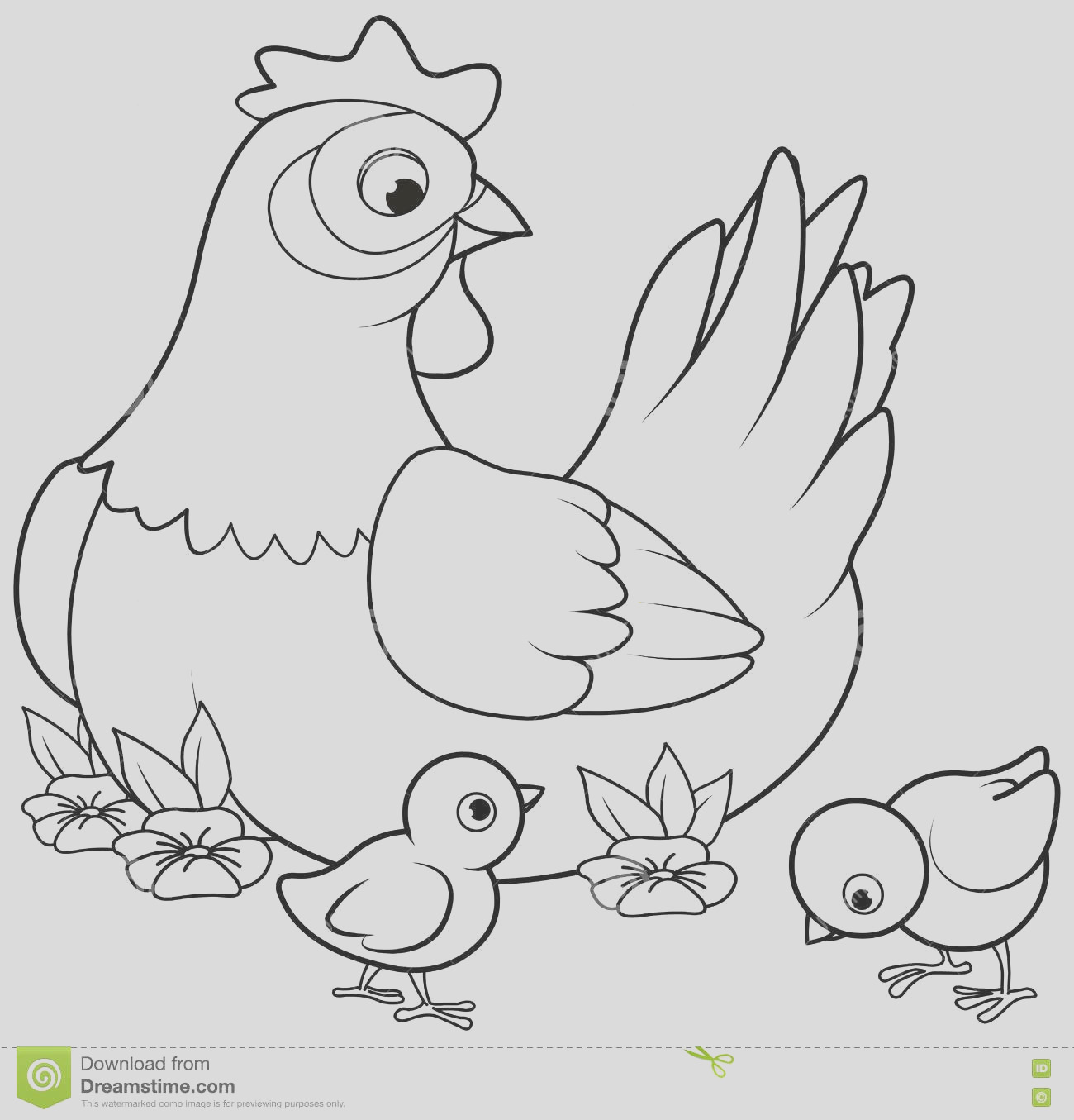stock illustration hen chicks coloring page mother its baby image