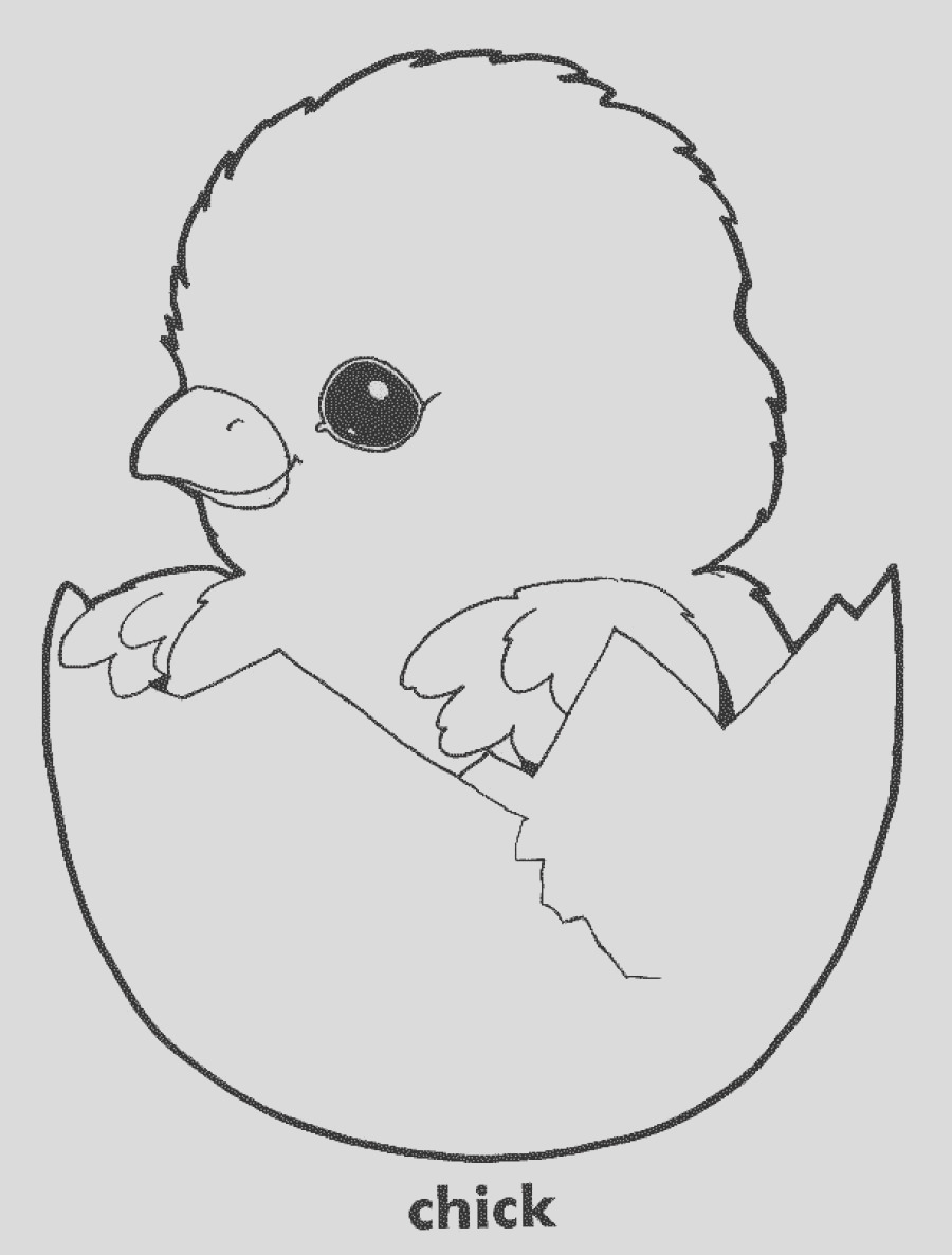 mother hen and chicks coloring pages