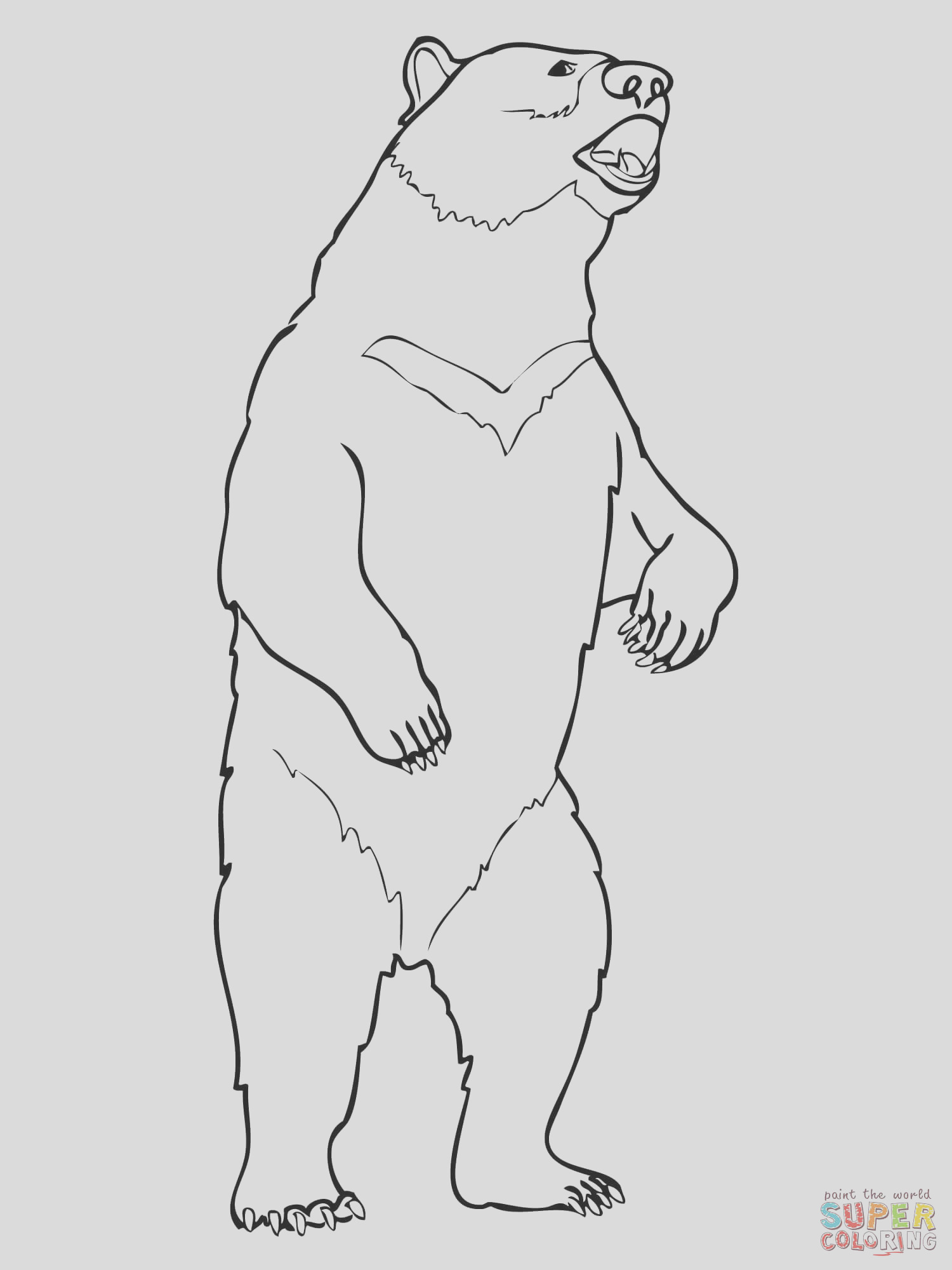 coloring pages black bears