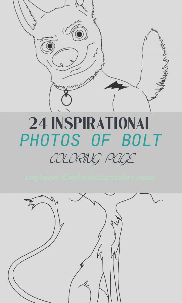 Bolt Coloring Page New 25 Best Disney Bolt Coloring Pages Images On Pinterest