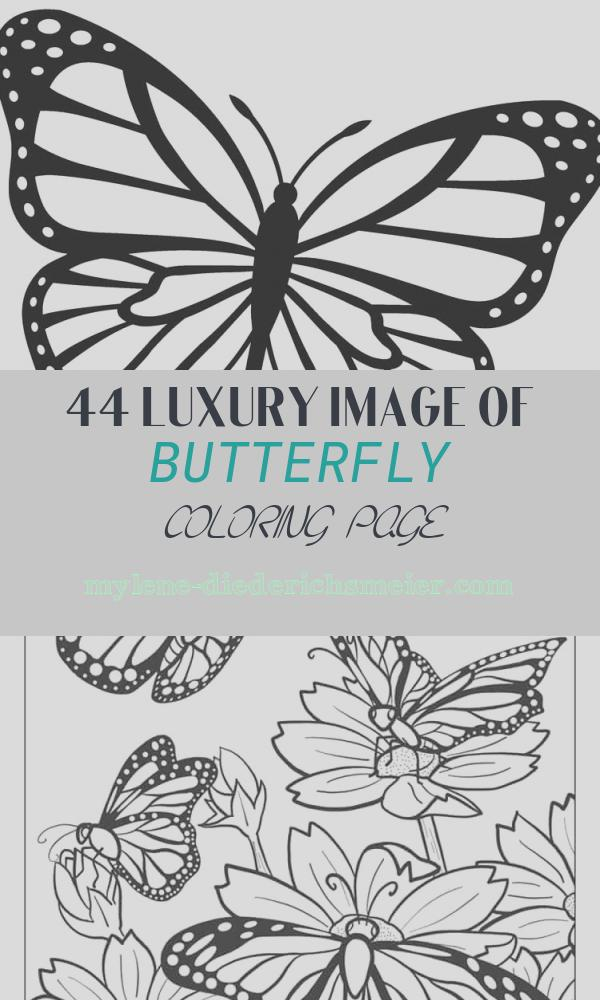 Butterfly Coloring Page Elegant Printable butterfly Coloring Pages for Kids