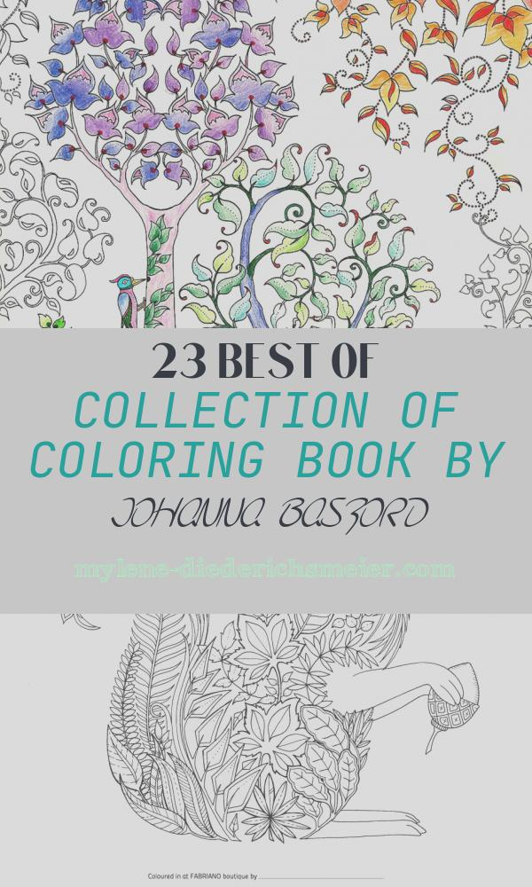 Coloring Book by Johanna Basford Beautiful British Artist Draws Coloring Books for Adults and Sells