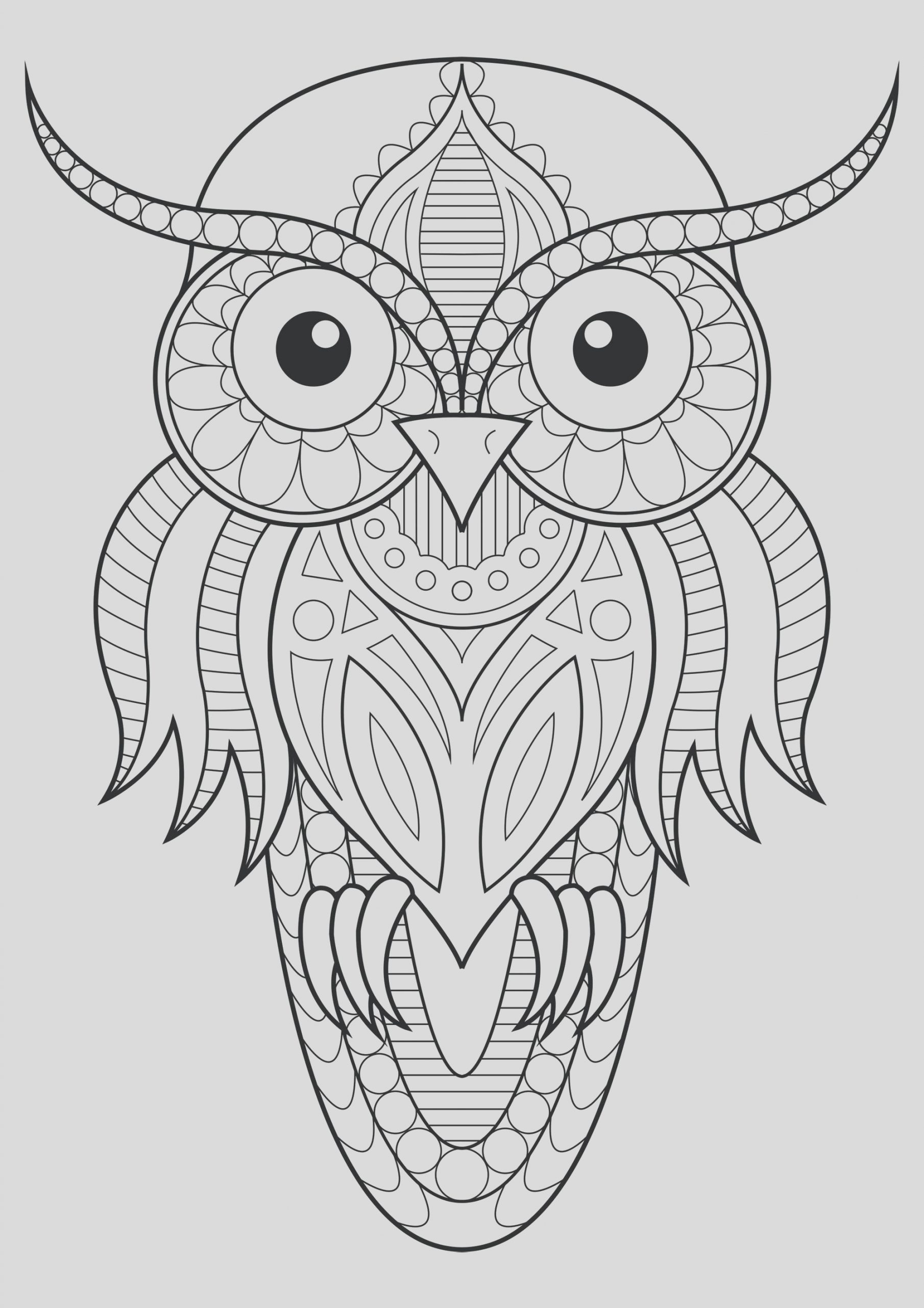 image=owls coloring owl simple patterns 1 1
