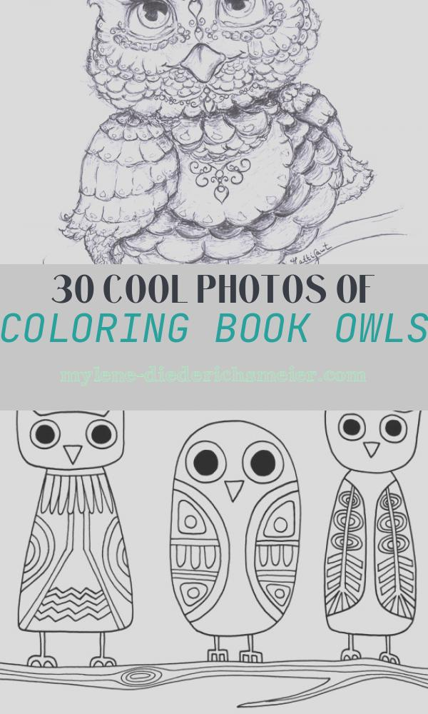 Coloring Book Owls Fresh Being Up with the Owls Hattifant