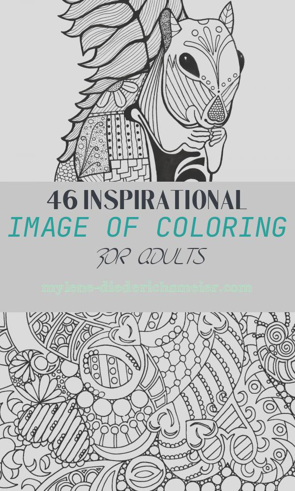 Coloring for Adults Luxury Intricate Squirrel Adult Coloring Page
