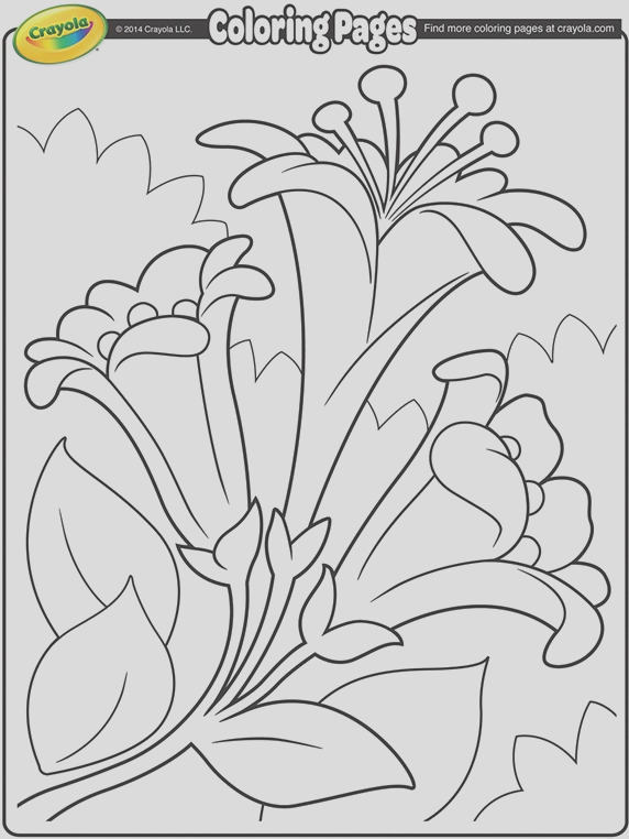 easter lilies ii coloring page