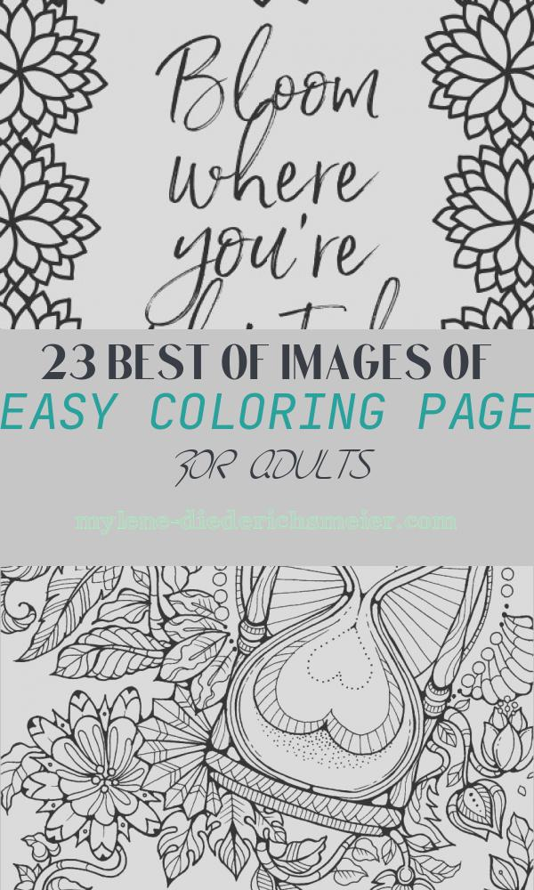"Easy Coloring Page for Adults Lovely Free Printable Adult Coloring Pages ""simple Floral"