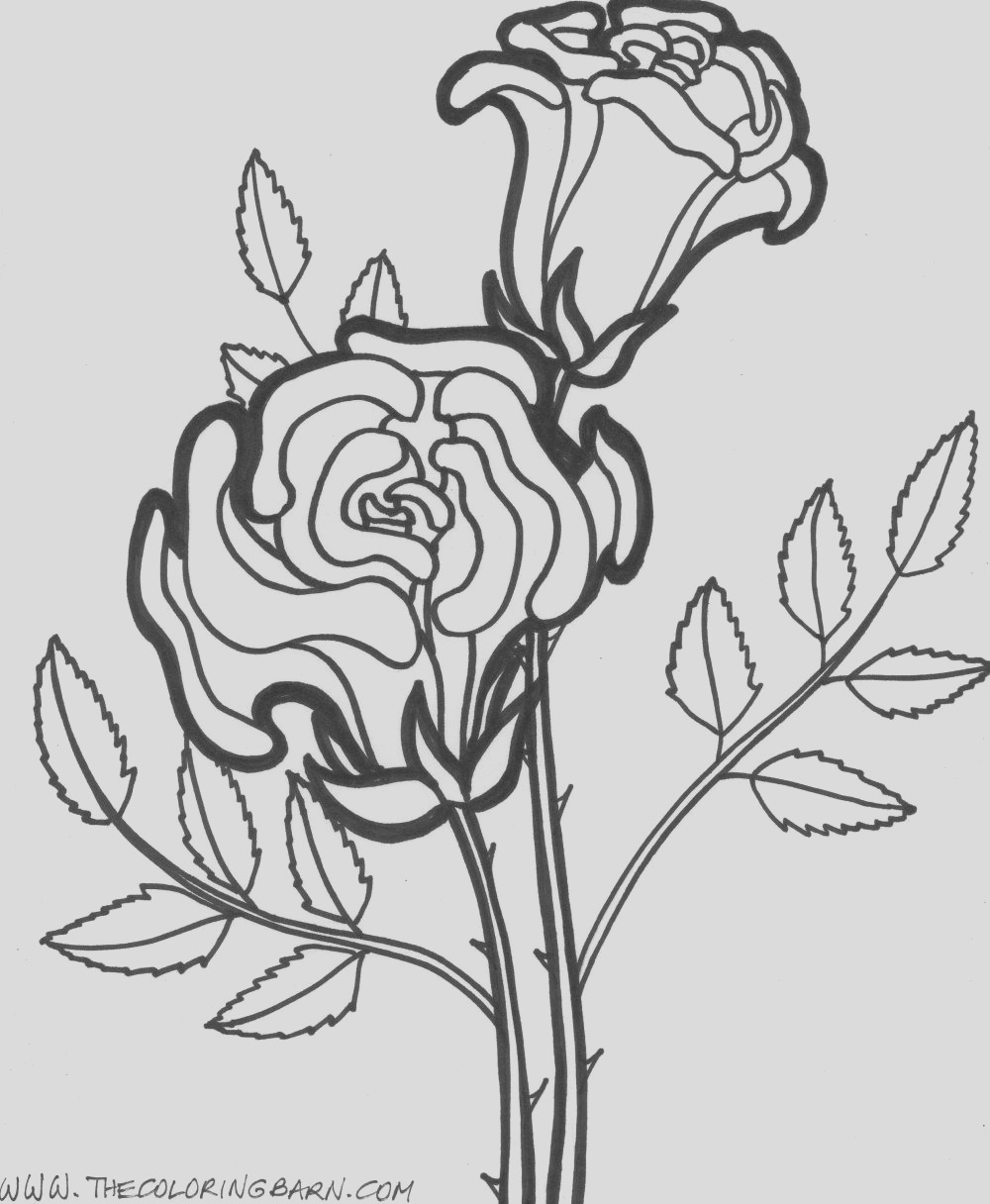 simple flower coloring pages for kids