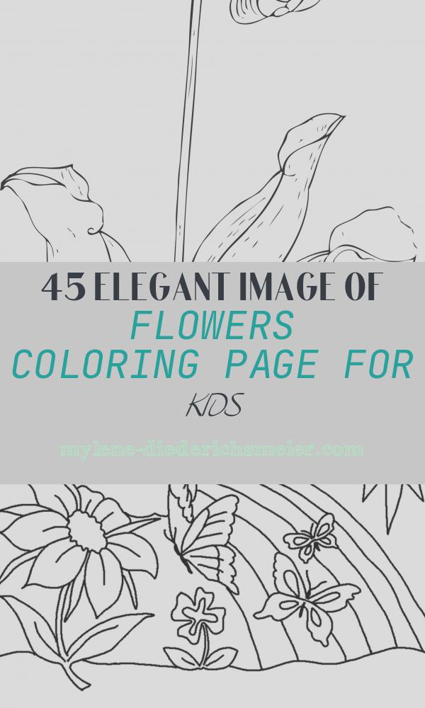 Flowers Coloring Page for Kids Luxury Free Printable Flower Coloring Pages for Kids Best