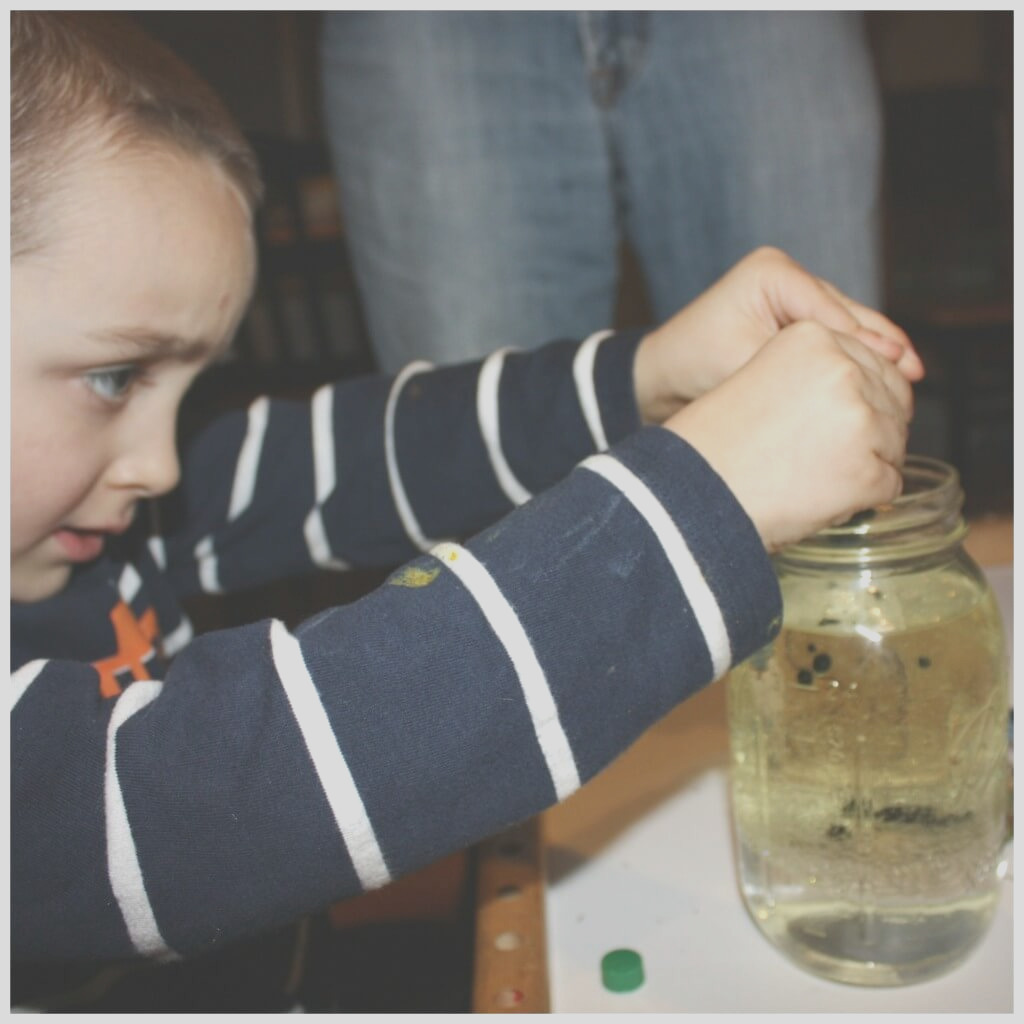 alka seltzer oil and water science experiment