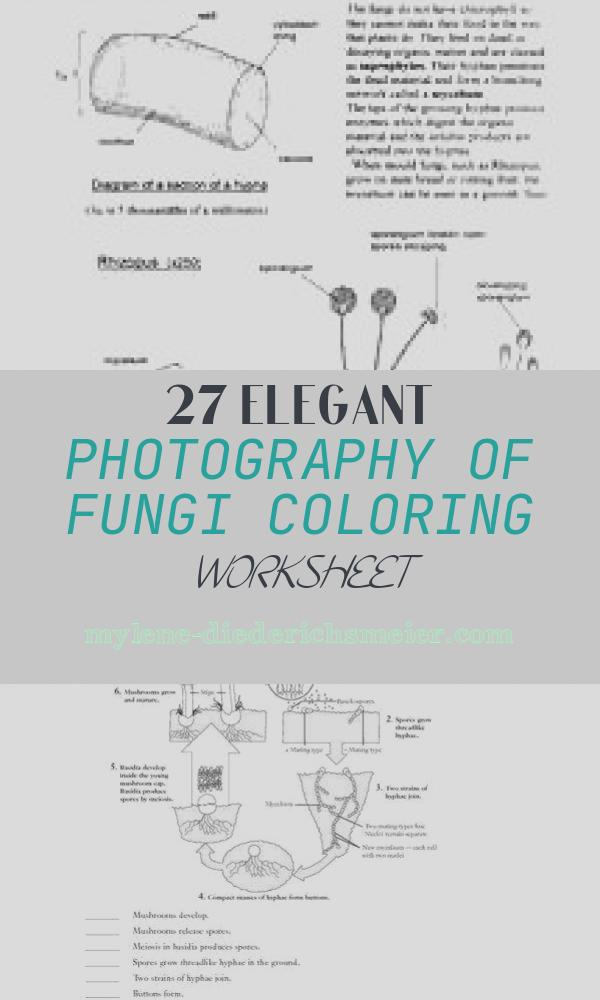 Fungi Coloring Worksheet Elegant Fungi