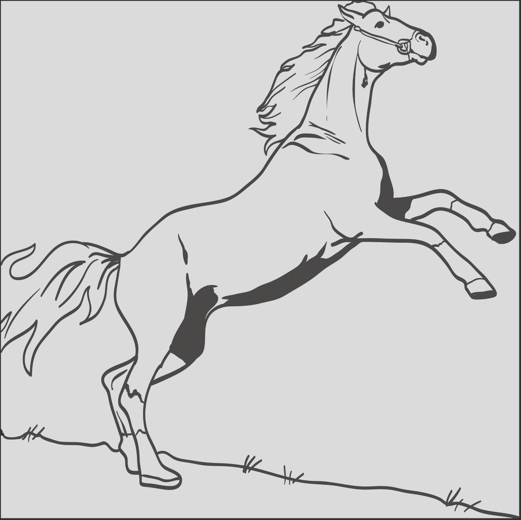 coloring page of horse bucking in the air a4255