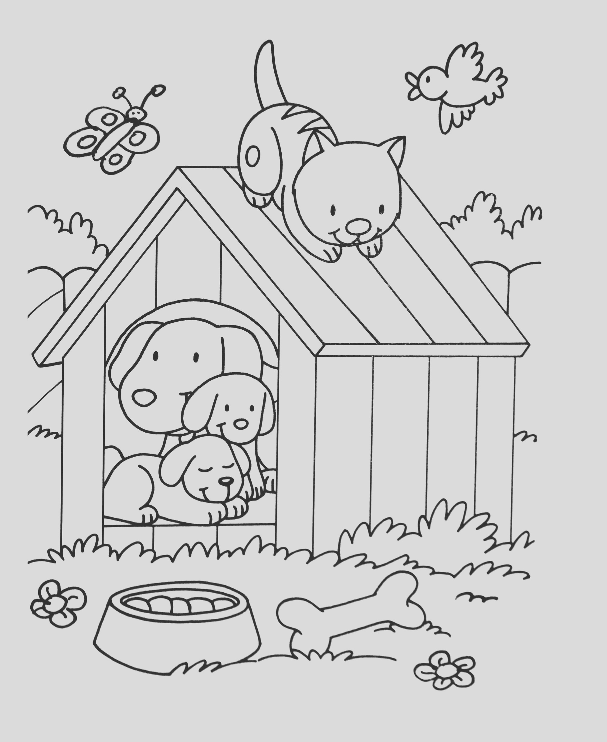 image=kids animals coloring dog cat bird 1