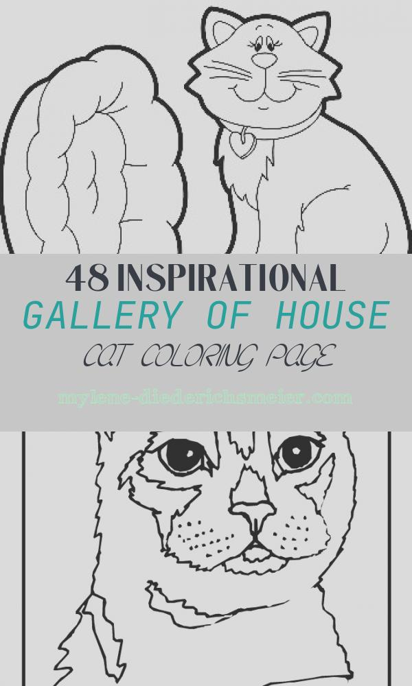 House Cat Coloring Page Lovely Animal S House Coloring Page