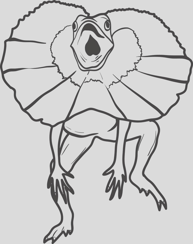 lizard coloring page 6 a4602