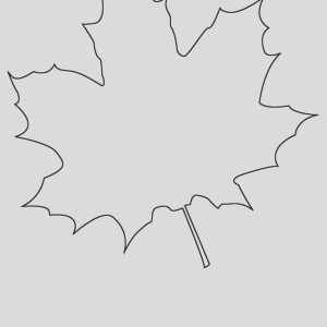 silver maple leaf picture coloring page